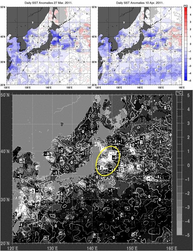 海水温解析2.jpg