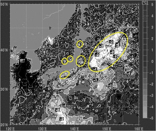 海水温解析7.jpg