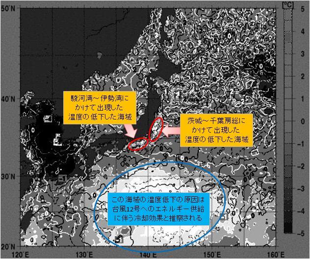 海水温解析21.jpg