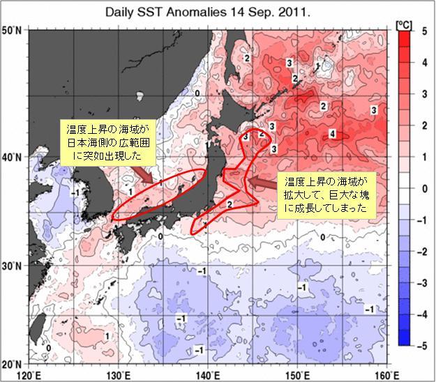 海水温解析31.jpg