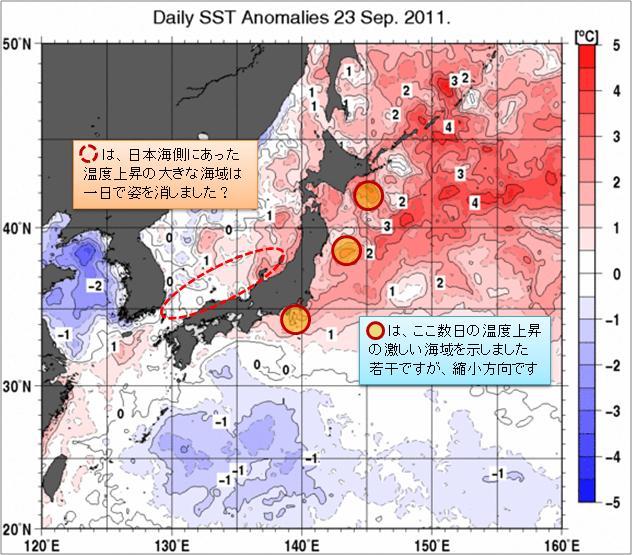 海水温解析35.jpg